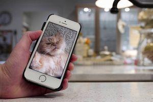 10 tuyệt chiêu ít được biết đến trên iPhone