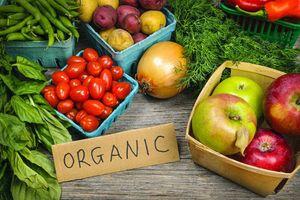 5 nguyên tắc sản xuất nông nghiệp hữu cơ