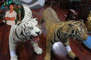 Sưu tầm thú nhồi bông là da của loài hổ cực hiếm, một người bị tạm giữ
