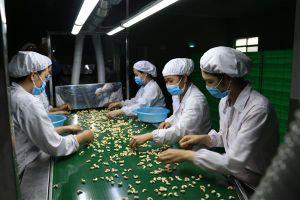 Các nhà sản xuất lo ngại về những bất ổn thương mại trên thế giới