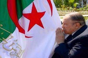 Algeria đạt nhiều thành tựu không thể phủ nhận trong 20 năm qua