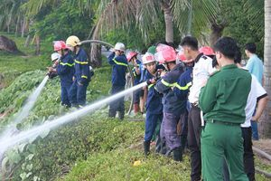 Rừng ở bán đảo Sơn Trà cháy vì du khách bất cẩn