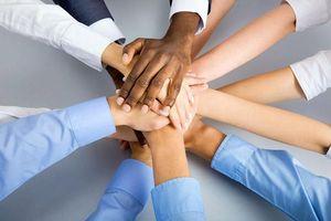 Khi nào nên làm việc theo nhóm?