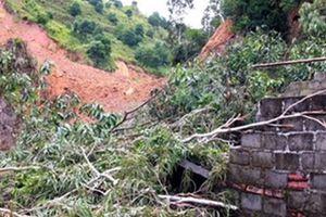 Nửa quả núi đổ ập xuống khu vực có 20 hộ dân sinh sống ở Hải Phòng