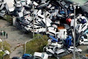 Hàng nghìn du khách Nhật chờ di tản sau đêm bị cô lập vì bão Jebi