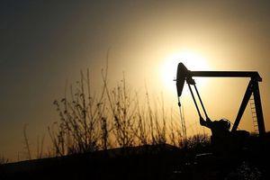 Thị trường năng lượng thế giới tạm bình ổn