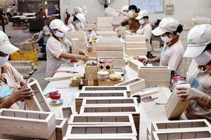 Lo ngại gỗ Trung Quốc 'mượn danh' hàng Việt để xuất khẩu