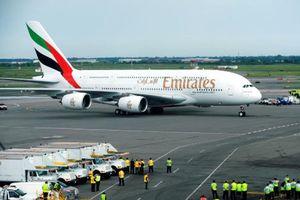 Mỹ chặn máy bay chở hơn 100 hành khách nhiễm bệnh từ Dubai tới New York