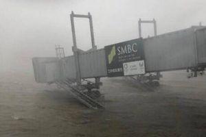 Đường vào sân bay Nhật Bản bị tàu đâm sập trong bão Jebi