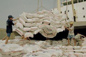 Kỳ vọng về xuất khẩu gạo trong những tháng cuối năm