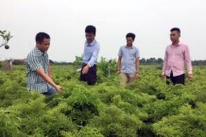 Nam Định nâng cao trách nhiệm hệ thống chính trị trong xây dựng nông thôn mới