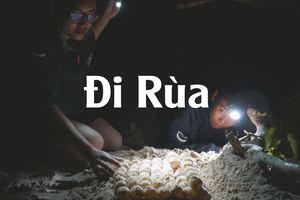 Đội 'hộ sinh' rùa biển độc đáo nhất Việt Nam