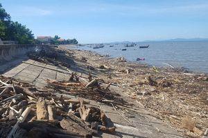 Nghệ An: Bãi biển ngập rác sau mưa lớn