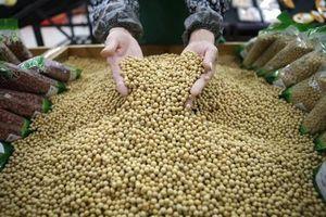 Thay đổi kiểm tra an toàn thực phẩm sản phẩm nhập khẩu lĩnh vực nông nghiệp