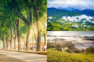 Thấy lòng xốn xang với 3 điểm đến mùa thu 'đẹp chất ngất' ở Việt Nam