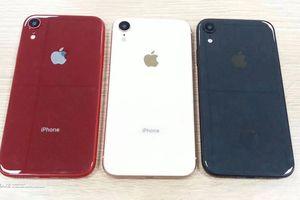 Xem ngay kẻo nguội: iPhone 9 bản đỏ, xanh và trắng vừa rò rỉ, giá thấp mà vẫn chất