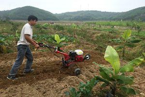 Hỗ trợ đất cho hộ nghèo vùng đồng bào dân tộc thiểu số