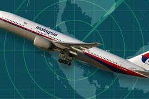 Nghi ngờ MH370 rơi trong rừng nhiệt đới ở Campuchia, chuyên gia Anh quyết tâm giải mã