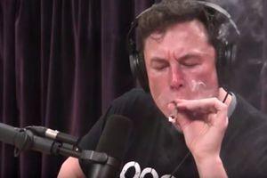 Tỉ phú Elon Musk công khai hút cần, cổ phiếu Tesla rớt 9%