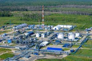 Gazprom, Mubadala, RDIF hợp tác phát triển các mỏ dầu ở Tây Siberia
