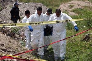 Rùng mình phát hiện 32 mộ tập thể chôn 166 người ở Mexico