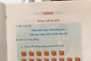 Dạy học trò đọc chữ theo ô vuông: Phụ huynh cần bình tĩnh để nhận xét