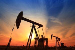 Dự trữ dầu của Mỹ thấp kỷ lục tạo đà cho giá dầu châu Á đi lên