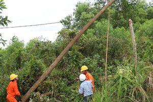 PC Thừa Thiên Huế chấn chỉnh hành vi vi phạm hành lang an toàn lưới điện cao áp