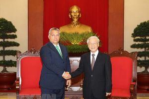 Không ngừng củng cố và phát triển mối quan hệ hữu nghị và hợp tác truyền thống Việt Nam - Hungary