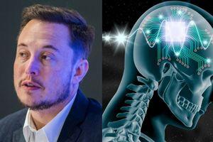 Tỉ phú Elon Musk muốn biến con người thành… siêu nhân