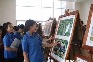 Triển lãm ảnh, phim phóng sự-tài liệu trong cộng đồng ASEAN