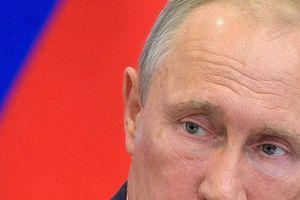 Syria: Cảnh báo sắc lạnh của TT Putin với phiến quân ở Idlib