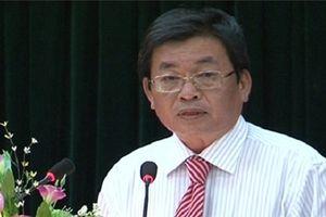 Chủ tịch tỉnh Ninh Thuận: 'Nhiều sếu đầu đàn đang tìm đến Ninh Thuận'