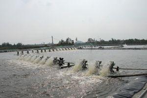 Tháo gỡ khó khăn trong nuôi trồng thủy sản tại xã Trường Giang