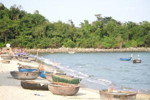 Dự án sinh thái bít lối xuống biển ở Đà Nẵng: Trưng cầu ý kiến của 1.208 hộ dân