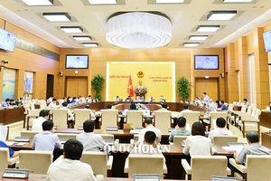 Thường vụ Quốc hội cho ý kiến việc hợp nhất 3 Văn phòng ĐBQH, HĐND, UBND cấp tỉnh