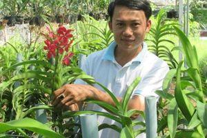 Bỏ lương 20 triệu, cầm nhà vay tiền trồng lan, lãi hơn 2 tỷ/năm