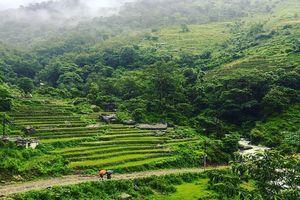 Hành trình tuyệt diệu đến ngôi làng hẻo lánh dưới chân núi Himalaya