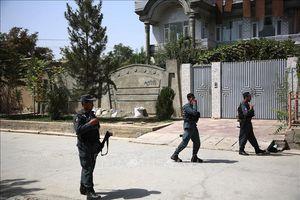 Taliban tấn công hàng loạt, sát hại 20 nhân viên an ninh