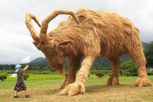 Nghệ nhân Nhật tiếp tục truyền thống làm những con vật khổng lồ bằng rơm rạ sau vụ mùa