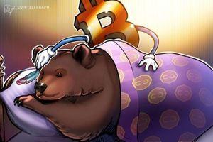 Giá tiền ảo hôm nay (9/9): 'Bitcoin khó trở lại mức 20.000 USD'
