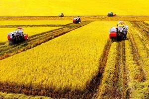 Bước chuyển mạnh mẽ trong nông nghiệp, nông dân, nông thôn