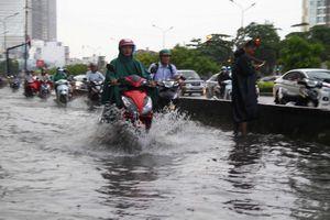 Nâng cấp đường Nguyễn Hữu Cảnh để chống ngập từ tháng 11