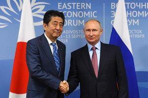 Ông Abe, Putin thảo luận để sớm ký hiệp định hòa bình