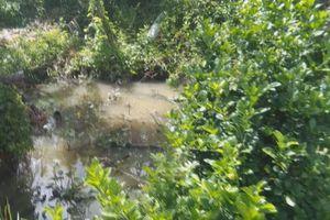 9X bị điện giật tử vong khi bơm nước cứu ruộng cỏ