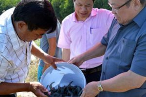 Đại hội Hội ND tỉnh Cà Mau: Huy động nguồn lực hỗ trợ ND