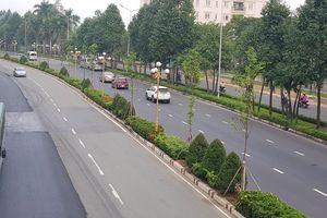 Khó hiểu việc thay thế hàng loạt cây xanh ở TP.Biên Hòa?