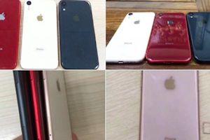 Điện thoại hai sim của Apple được gọi là iPhone Xc