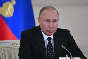 Ông Putin: Quan hệ giữa Nga và Nhật Bản đang phát triển đều đặn