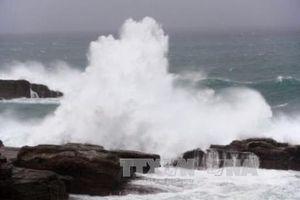 Ngày mai 11/9, áp thấp nhiệt đới có khả năng mạnh lên thành bão